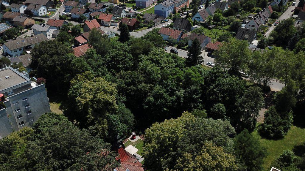 Matulusgarten - Sommer - 09