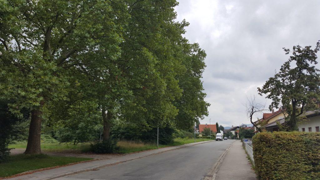 Matulusstrasse - vorher